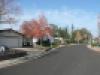 LV Street Scene 2