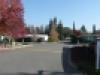 LV Street Scene 7
